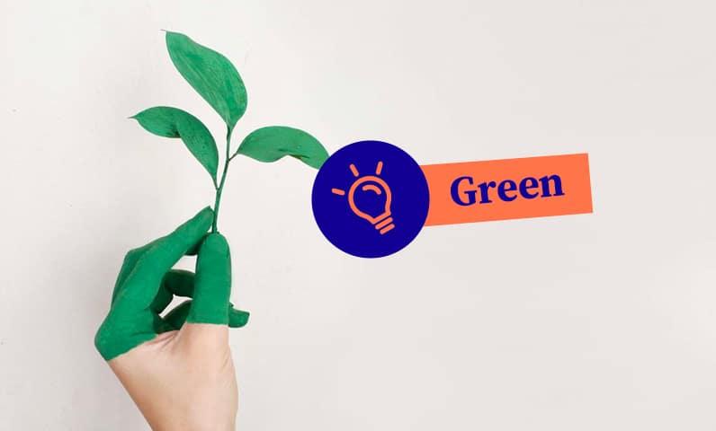 Main plante green Kiute Pro
